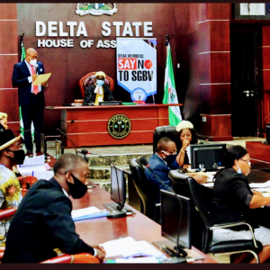 Delta State youth assembly